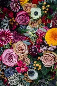 Image For Flowers The 25 Best Flowers Ideas On Pinterest Pretty Flowers Flower