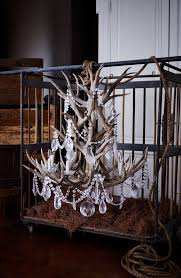Chandelier Define Ralph Home S Stag Chandelier Combines Naturally Shed