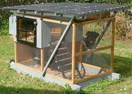 chicken coop ideas and pictures make it your own