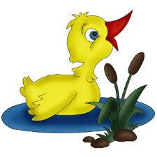 ducklings cartoon animal images