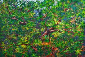 donald rainville artist tree at my window robert series