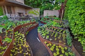 Steep Hill Backyard Ideas How To Turn A Steep Backyard Into A Terraced Garden