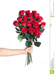 Bouquet Of Roses Hand Holding Bouquet Of Red Roses Stock Photos Image 22973793