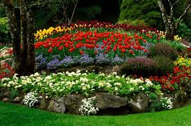 Flower Garden Ideas Raised Bed Flower Garden Ideas Flower Bed Ideas