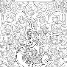 elegant peacock coloring page in exquisite style royalty free