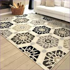 Target Outdoor Rugs Menards Area Rugs Decoration Outdoor Rugs Indoor Carpets Rug
