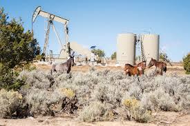 www edible fracking in new mexico edible santa fe albuquerque taos