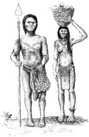 cultural evolution technology population and social political