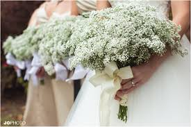 wedding flowers knoxville tn babys breath wedding bouquets winter wedding knoxville wedding