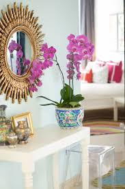 131 best in the home office images on pinterest phalaenopsis