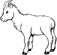 goat coloring pages print color craft