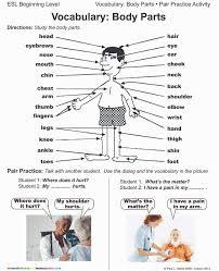 free worksheets body parts in spanish bloomersplantnursery com