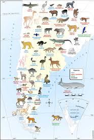 Cordoba World Map by