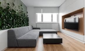 living room plants in living room 034 transitional design in
