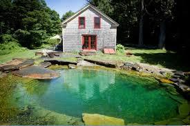 Backyard With Pool Ideas Backyard Pond Ideas Hgtv