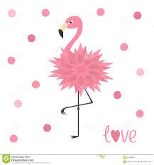 pink flamingo standing on one leg flower body exotic bird zoo
