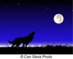 wolf and moon tribal wolf howling at the moon drawings search