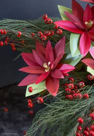 paper poinsettia plant lia griffith