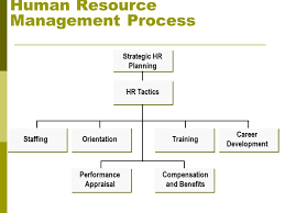 chapter 10 human resource management learning objectives after