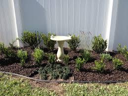 landscaping backyard overthrow martha