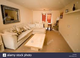 modern average house home decoration decorated average typical uk