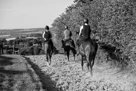richard hobson runners today sports betting tips