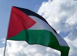 Palistinian Flag Buy Yours On Ebay Http Www Ebay Co Uk Itm Extra Large Palestine