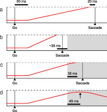 the countermanding task revisited fast stimulus detection is a