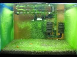 Aquascape Aquarium Designs White Cabinetry And L Shaped Ceiling Design With Aquarium Recessed