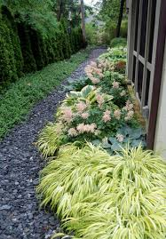 139 best ground covers images on plants landscaping