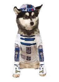 Dogs Halloween Costume 41 Pets Halloween Costumes Images Pet
