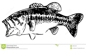 largemouth bass clip art many interesting cliparts