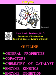 enzyme revised 2011 chatchawin active site cofactor biochemistry