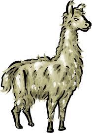 cartoon llama clipart