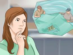 how to start a fish hatchery with pictures wikihow