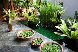 plantes dépolluantes chambre à coucher chambre plantes dépolluantes pour maison plantes qui purifient