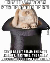 Magician Meme - on earth a magician puts his hand in his hat in the rabbit realm the