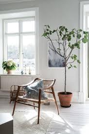 living room trees home design ideas