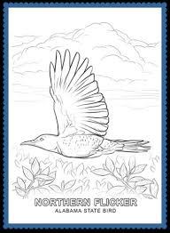 alabama bird northern flicker usa facts kids