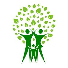 how to build a family tree nextadvisor
