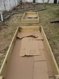 impressive preparing raised garden bed 17 best ideas about box
