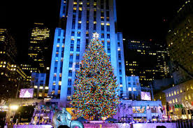 big and beautiful christmas trees around the world