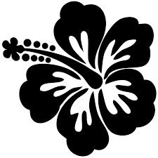 hawaiian flower drawing clipart wikiclipart
