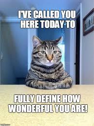 Cat Internet Meme - take a seat cat memes imgflip