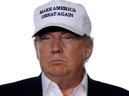 Top Gun Hat Meme - url 22 top gun hat meme investingbb
