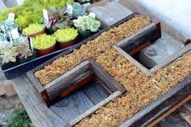 wall mounted succulent letter diy house u0026 fig