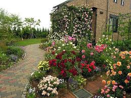45 best rose gardens images on pinterest roses garden beautiful