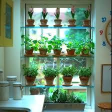 Window Sill Herb Garden Designs Kitchen Window Sill Herb Garden Kitchen Garden Window Home Depot