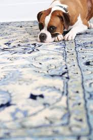 How Do You Clean An Area Rug Best 25 How To Clean Rugs Ideas On Pinterest Cleaning Furniture