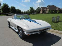 local corvettes for sale vettehound 500 used corvettes for sale corvette for sale